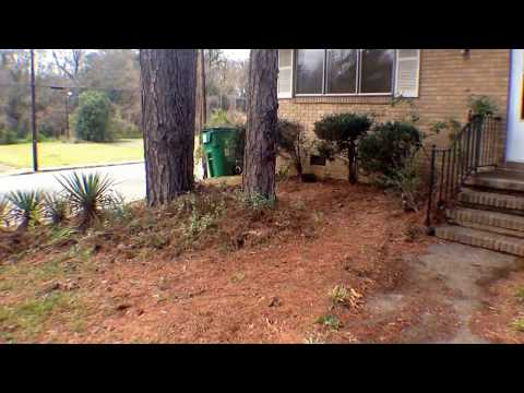 3101 Erskine Dr, Charlotte-Move Out Condition