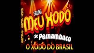 Banda meu Xodó de Pernambuco Vol.02  Malvada