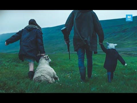 Lamb - Trailer subtitulado en espan?ol
