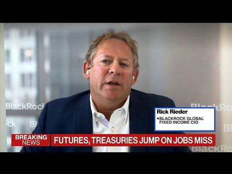 BlackRock's Rieder: A Lot of Error Factor in Jobs Report