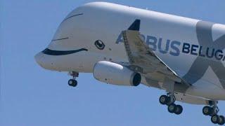 L'envol du Beluga XL d'Airbus