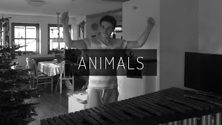 Animals - Martin Garrix (Marimba Cover)