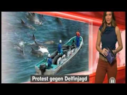 Delfin-Massaker in Taiji - RTL2 Januar 2014