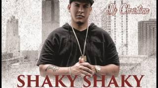 DjChristian (Daddy Yankee) - Shaky Shaky Remix