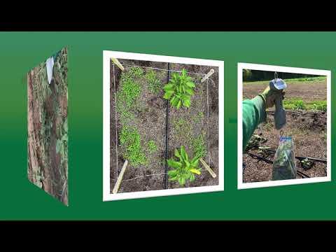Yard Waste Mulch Promo Video
