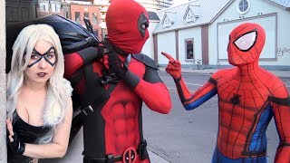 SPIDER-MAN vs DEADPOOL vs BLACK CAT