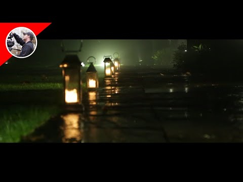 Fog Lights - Calcot Manor, United Kingdom