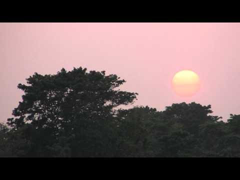 Evening sun / 夕陽