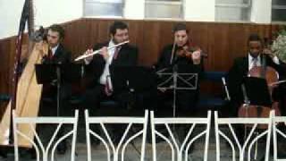 Amar Você Fernanda Brum Harpa e Violino - Música de Casamento Evangélico - Grupo Vênus SP e RJ