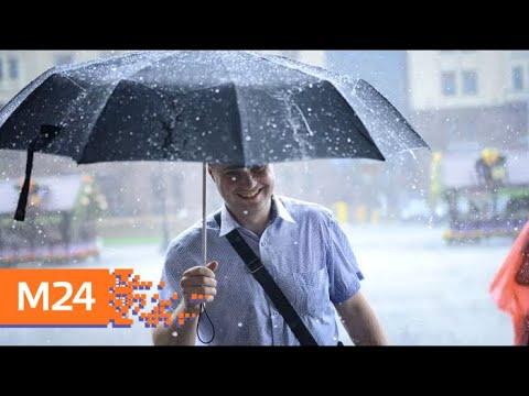 """""""Климат-контроль"""": дождливая погода ожидает москвичей в ближайшие дни - Москва 24"""
