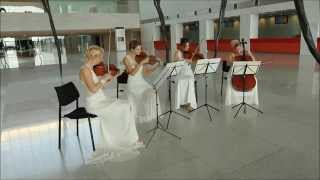Violin Angels String Quartet
