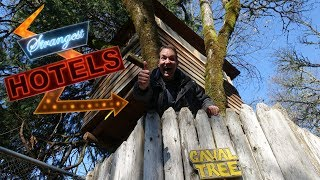 TREE HOUSE! Strangest Hotels #3 VR180 3D Experience