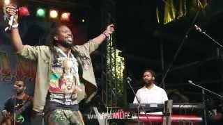 Torch @ Reggae Jam 2014, 01.-03.08. Bersenbrück
