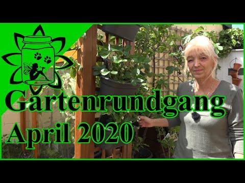 Gartenrundgang April 2020   Gemüsegarten   Biogarten   Hochbeet   Balkongarten   Garteneinkochfee