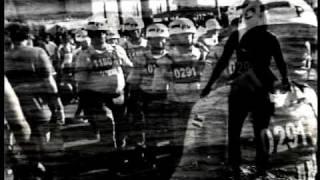 Pitty - Temporal (Admirável Vídeo Novo)