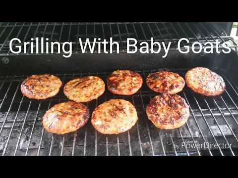 Grilling With Baby Goats
