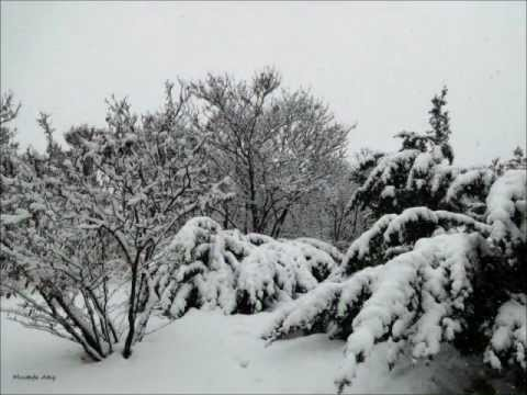 Mustafa Ataş'ın Gözünden Kış Manzaraları Şubat 2012