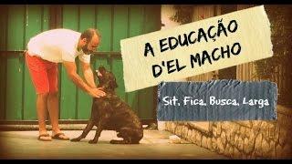 A Educação d'El Macho em casa