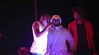 Danny Brown Childish Gambino & ScHoolboy Q Live @ Summer Stage