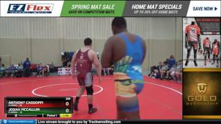 285 Anthony Cassioppi Illinois vs JOSIAH MCCALLUM Florida 8446555104