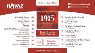 Zülfü Demirtaş - Telgrafın Direkleri