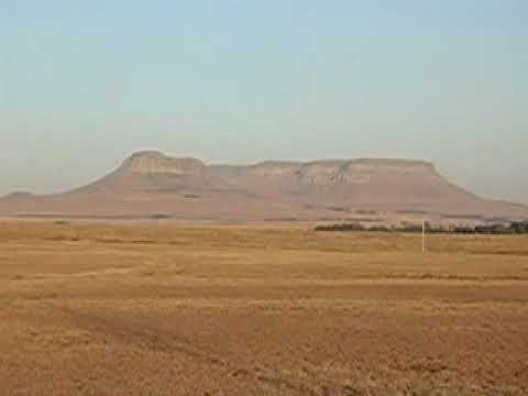 South African Veld – 1