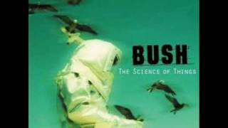 The Chemicals Between Us - Bush