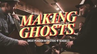 Making Ghosts By Great Peacock feat. Steve'n'Seagulls (LIVE)
