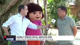 Juan Carlos Hómez se fue al Naples Zoo para hablar de la actividad de Dora y Diego