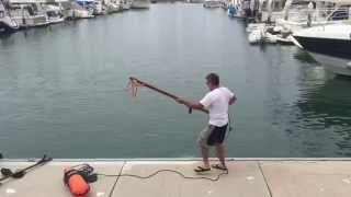 You've Got To See This Guy Spear A Yellowfin Tuna From A Marina Dock!