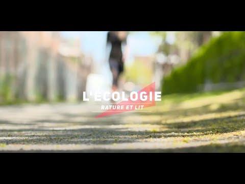 Vidéo de Daniel Lessard