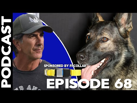 Dogs Make Life Better - Episode 68