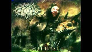 Naglfar - I am Vengeance (cello cover)