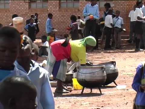 Limpopo's Attractions – South Africa