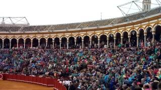 Nerva Banda Tejera Sevilla 2017