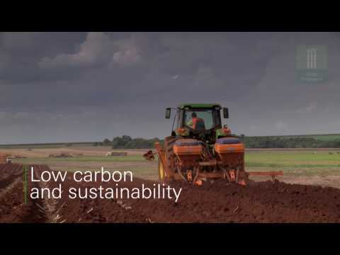 BP biofuels embedding technology in agricultural value chain