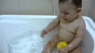 Patinho nadador