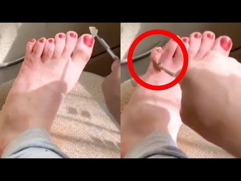 TRY NOT TO LAUGH - Funny Viral Videos | Best of the Week