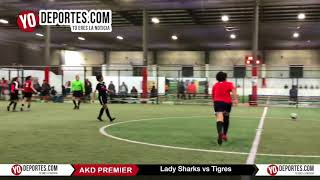 Lady Shark vs. Tigres AKD Premier Academy Soccer League