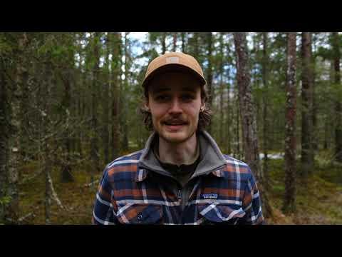 Alexander Stenfeldt - Outdoor Onsdag på @jkpg