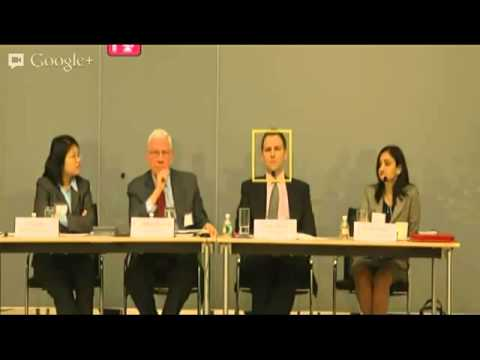 NGO Liability Roundtable (February 2013) Full Video