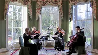 Perfect Day (Lou Reed) Wedding String Quartet