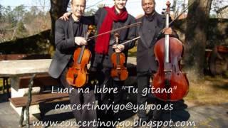 """Música bodas Galicia - Luar na lubre """"Tu gitana"""" - Cuarteto de cuerda"""