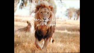 kole yacouba camara 68 الحاج - يعقوب كمارا - رحمه الله - من جمهورية مالي width=
