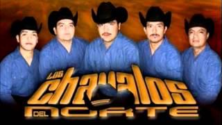 Los Chavalos Del Norte (el Judaz Azelerado)