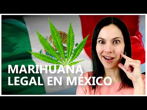 ¿Por qué MÉXICO legalizará la MARIHUANA?