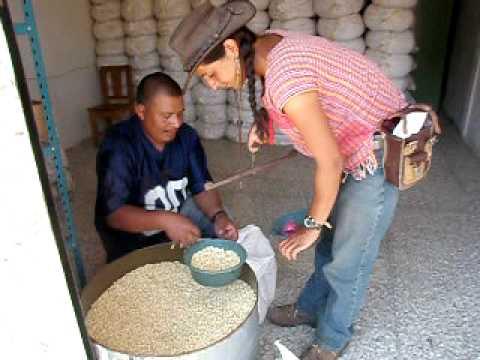 L'achat du grain – Compra del grano – Guatemala