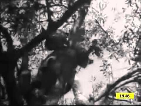 Kabylie 1946 (Lorsque nous étions pauvres, mais fiers)