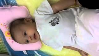 Baby white chivy
