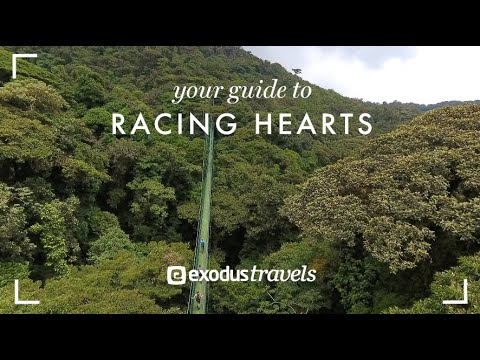 Exodus Travels - Your Guide To Racing Hearts